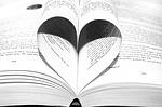 Brevet Français : Type et forme de phrase