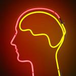 Le mindmapping ou les cartes heuristiques