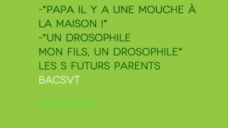 Corrigé du Bac 2014 SVT