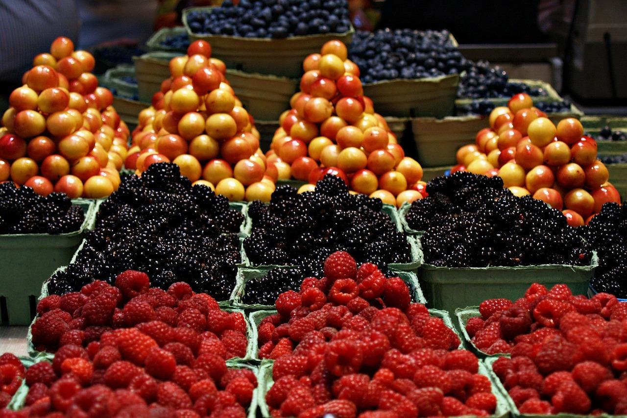 De quoi les aliments sont-ils composés ?