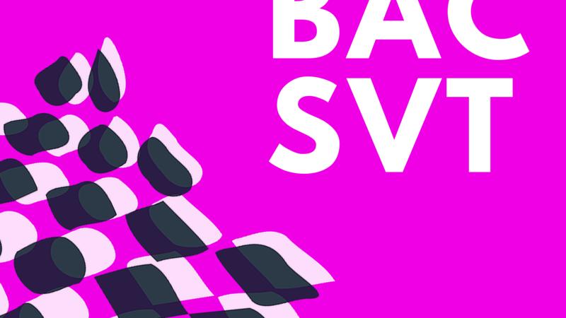 Bac SVT 2015 Amérique du Nord