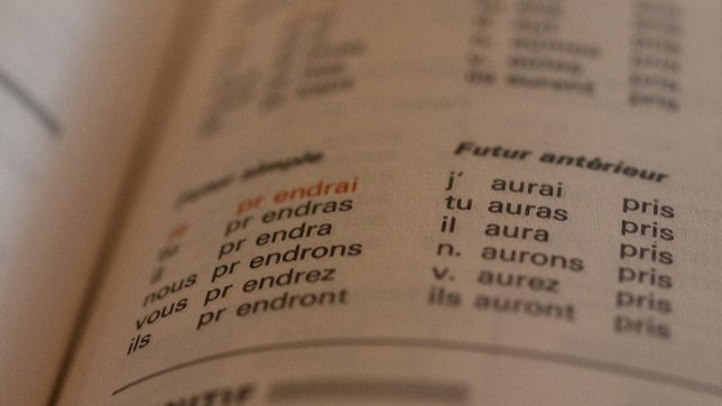 L'étude du verbe
