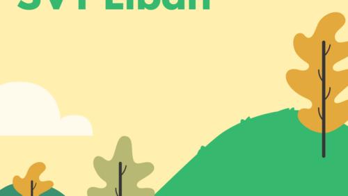 Bac SVT 2018 – Sujets et corrigés Liban